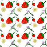 Seamless texture of strawberries and flowers Royalty Free Stock Image
