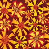 Seamless texture with stripy flower ornament Stock Photography