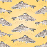 Seamless texture trout vintage vector Royalty Free Stock Photo