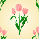 Seamless texture tulips spring background vector Royalty Free Stock Photos