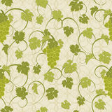 Seamless texture with vines and bunches of grapes. Royalty Free Stock Image