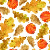 Seamless texture of watercolor fall oak and aspen leaves. Bright autumn print with natural elements