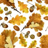 Seamless texture of watercolor fall oak leaves and acorns. Bright autumn print with natural elements