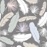 Seamless texture with white feathers. Seamless gray pattern background with white feathers Royalty Free Stock Photography