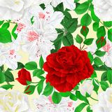 Seamless texture white and red Roses with buds and leaves and white rhododendrons royalty free illustration