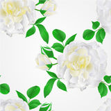 Seamless texture White Rose with buds and leaves vintage vector. Seamless texture White Rose with buds and leaves vintage  Festive background vector illustration Royalty Free Stock Photography