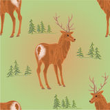 Seamless texture young deer in the forest vector Royalty Free Stock Images