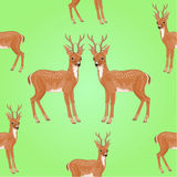 Seamless texture young deer vector Stock Images