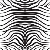 Seamless texture of zebra skin. Illustration royalty free illustration