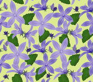 Seamless textured flower wallpaper Stock Images