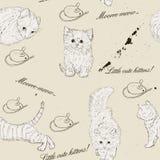 Seamless texturera med kattungar. Fotografering för Bildbyråer