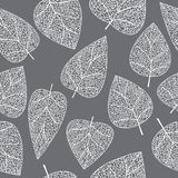 Seamless. The Leaves And Branches. Royalty Free Stock Images