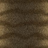 Seamless Tiger Animal Fur Background Stock Photography