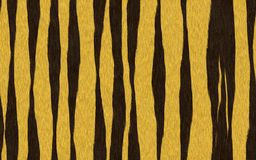 Seamless tiger skin pattern Royalty Free Stock Images