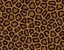 Seamless tile leopard fur background Stock Image