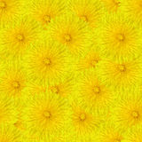 Seamless tileable flowers Royalty Free Stock Images