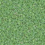 Seamless Tileable Natural Ground Field Texture. Photo royalty free stock photo