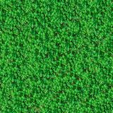 Seamless Texture. Green Meadow Grass. Royalty Free Stock Photography