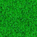 Seamless Texture. Green Meadow Grass. Royalty Free Stock Image