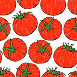 Seamless tomato pattern Stock Photos