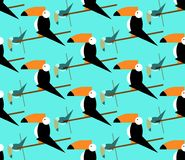 Seamless toucans pattern. Vector tropical background. Toucan icon, Cartoon illustration of toucan vector icon for web, flat style Stock Images