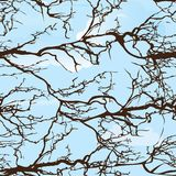 Seamless tree pattern royalty free illustration