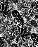 Seamless trendy black pattern with exotic palm leaves on a white background. Vector botanical illustration Royalty Free Stock Photo