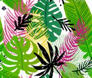 Seamless trendy pattern with green exotic palm leaves on a white background. Vector botanical illustration Stock Photos