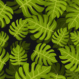 Seamless tropic leafs background. Floral summer nature design pattern. Botanical style Stock Photo