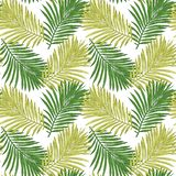 Seamless pattern of tropical leaves. Vector seamless pattern. Tropical illustration. Jungle foliage. stock illustration