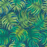 Seamless Tropical Floral Pattern Background Texture Stock Photos