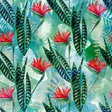 Seamless tropical floral pattern. Bright red flowers, green leaves on blue green background. Stock Photos