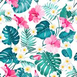 Seamless tropical flower. Seamless tropical flowers and jungle palms. Beautiful fabric pattern with a tropical flowers isolated over white background. Blossom Royalty Free Stock Images