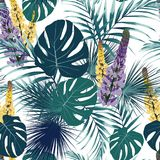 Seamless tropical flower pattern background. Lupine flowers, jungle leaves, on light background. Exotic print. Vintage motives Royalty Free Illustration