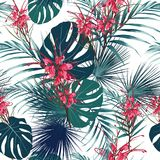 Seamless tropical flower pattern background. Protea flowers, jungle leaves, on light background. Exotic print. Vintage motives. White background Stock Illustration