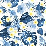 Seamless tropical flower. Royalty Free Stock Images