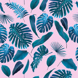 Seamless Tropical Jungle Leaves Background stock images