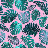 Seamless Tropical Jungle Leaves Background Royalty Free Stock Image