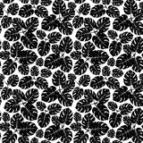 Seamless tropical monstera palm beach leaves pattern background. Vector illustration flat style design. Black and white Royalty Free Stock Photos