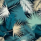 Seamless tropical palm leaves pattern. Seamless floral pattern with stylized fan and silk palm leaves. Jungle foliage, green and beige hues on ecru background Royalty Free Stock Image