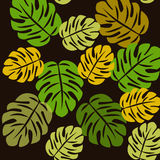 Seamless Tropical Pattern Royalty Free Stock Photography