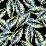 Seamless tropical pattern with banana leaves Royalty Free Stock Photography