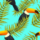 Seamless tropical pattern, exotic background with palm tree branches, leaves, leaf, palm leaves. endless texture Stock Photos