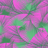 Seamless tropical pattern with green palm leaves. Jungle texture. Perfect for wallpapers, pattern fills, web page backgrounds. Royalty Free Stock Images
