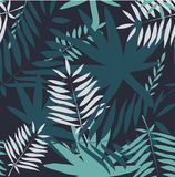 Seamless tropical pattern. Leaves palm tree illustration. Modern graphics. Stock Photography