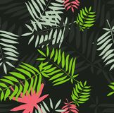 Seamless tropical pattern. Leaves palm tree illustration. Modern graphics. Royalty Free Stock Photos