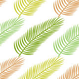Seamless tropical pattern with palm leaves vector illustration