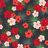 Seamless Tropical Pattern, Palm Leaves, Bright Chinese Rose Flowers On A Black Background. Stock Photography