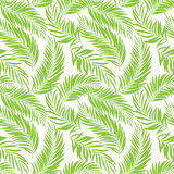 Seamless tropical pattern with palm leaves for fabric design or other uses. Royalty Free Stock Photography
