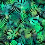 Seamless tropical pattern with palm leaves. Royalty Free Stock Image